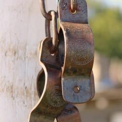 shackles copy